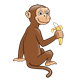 Brown Monkey eating a partially peeled banana