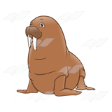 Brown Walrus