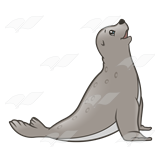 Light Gray Seal