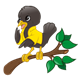 Black Bird on Branch wearing a yellow jacket