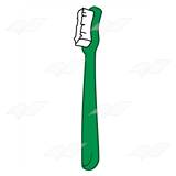 Green Toothbrush