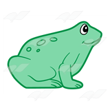 Light Green Frog