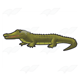 Green Crocodile