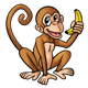 Brown Monkey eating a banana