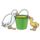 Two Ducks looking at grain bucket