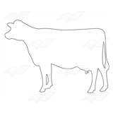 Cow Silhouette