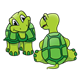Two Green Turtles front and back