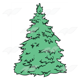 Evergreen Tree 1