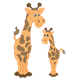 Two Giraffes adult and baby