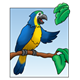Parrot with a sky background