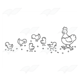 Chicken Flock