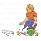 Lady Feeding Ducks