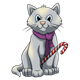 Gray Kitten with a candy cane and purple scarf