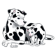 Two Dalmatians mother and puppy