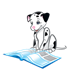 Dalmatian Puppy reading a book