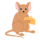 Light Brown Mouse eating a piece of cheese