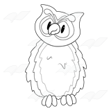 Owl with Curved Beak