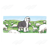Sheepdog with Sheep