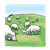 Sheep on a Hill Color PNG