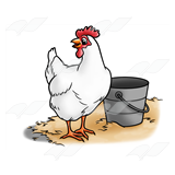 Hen and Bucket