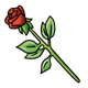 Red Rose with a long stem