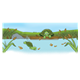 Pond Scene with turtles, fish, a frog and cattails