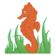 Orange Sea Horse in green seaweed