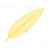 Light Yellow Feather
