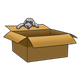 Gray Puppy on a box