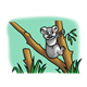 Koala Bear in a eucalyptus forest holding onto a tree