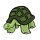 Green Tortoise with long neck