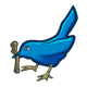 Blue Bird with twig