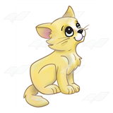 Yellow Kitten