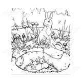 Rabbit and Burrow