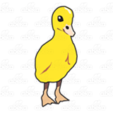 Standing Yellow Duckling