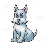 Gray Scottie