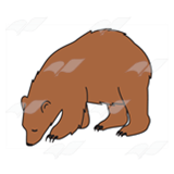 Light Brown Bear