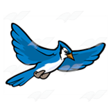 Flying Blue Jay