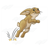 Hopping Rabbit