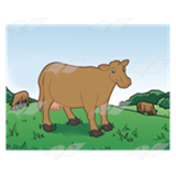 Brown Cows