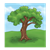 Tree Color PNG
