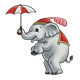 Baby Circus Elephant holding a red and white umbrella