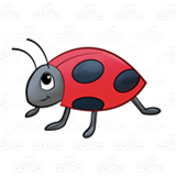Little Red Ladybug