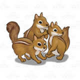 Three Brown Chipmunks