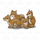 Four Brown Chipmunks