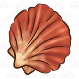Brown Scalloped Shell