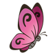 Pink Butterfly with black outlined wings