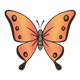 Orange Butterfly with black outlined wings