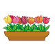 Brown Flower Box with tulips