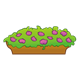 Brown Flower Box with large purple flowers